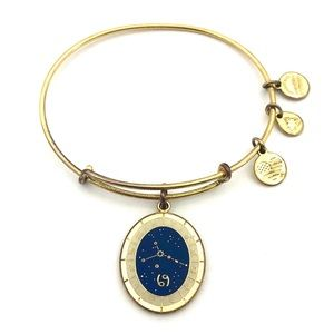 Alex And Ani Cancer Celestial Wheel Gold Bracelet